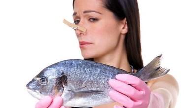 1-kak izbavit'sya ot zapaha ribi