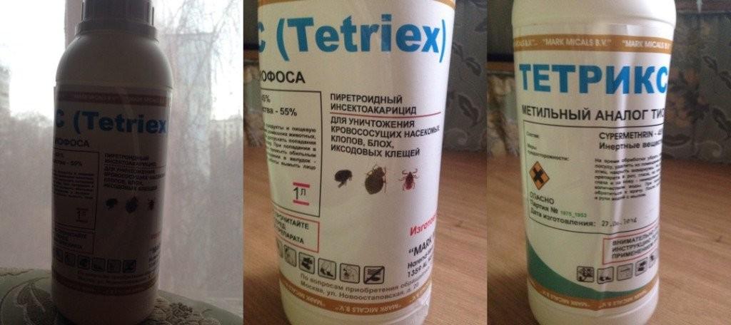 Тетрикс