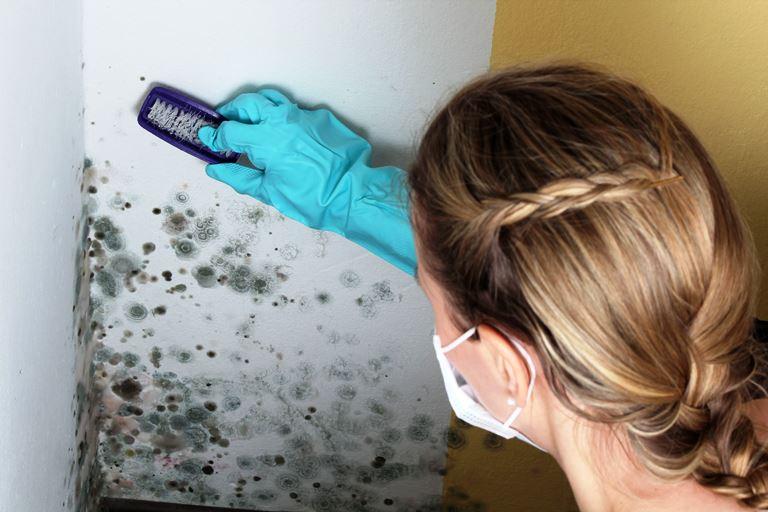 Подготовка поверхности к очищению от плесени
