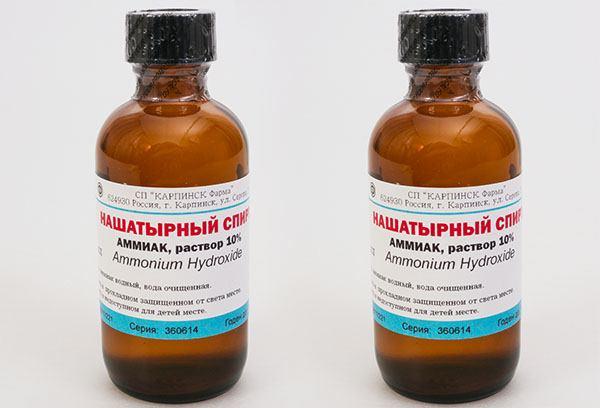 Izbavitsja-ot zapaha-koshachej-mochi-9