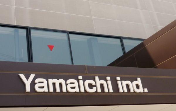 Подушки фирмы Yamaichi
